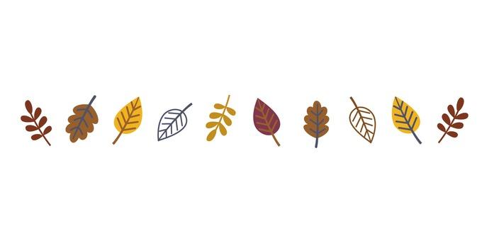 Line of fallen leaves