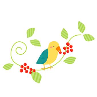 Reef & Bird
