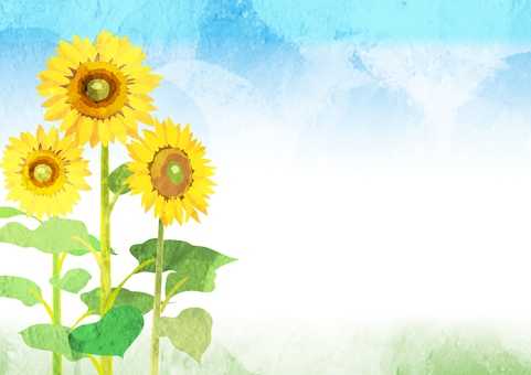 Sunflower background Watercolor style