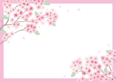벚꽃의 프레임 5
