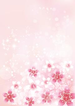 桜きらきら40