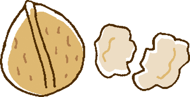 Food 055