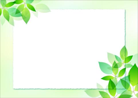 Fresh green material 20