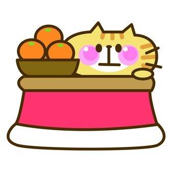 Cat kotatsu