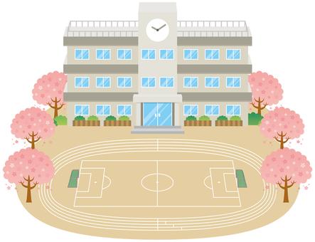 School building and schoolyard