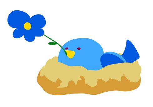 I sleep in a blue bird nest