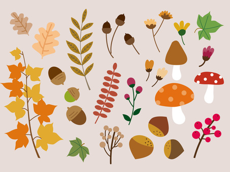 Plant Material Collection - Fall Winter 3
