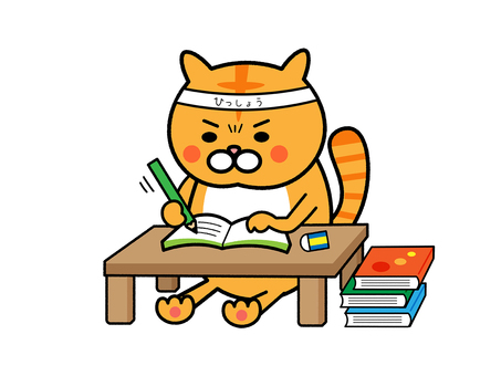 Cat catching a big win and studying hard