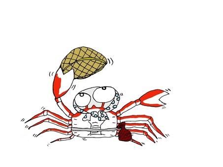 Hanaki of the crab