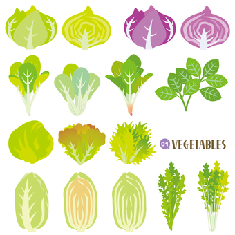 Vegetable set leafy vegetable edition