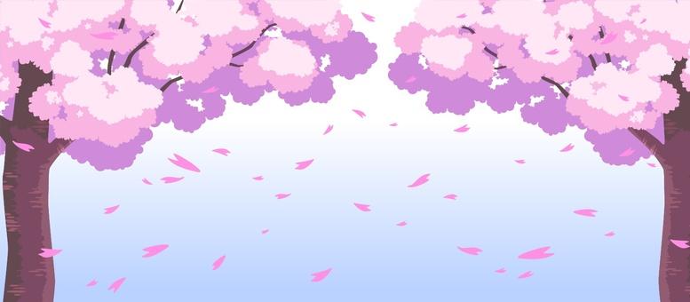 Sakura - 002