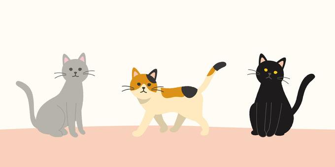 Cat _1