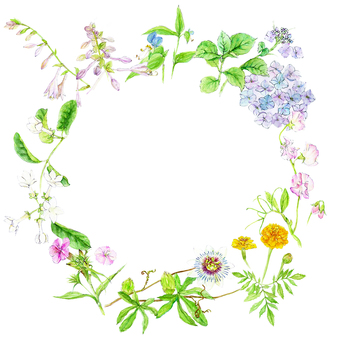 Watercolor Flower Frame - early summer -