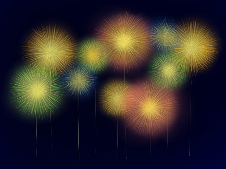 Fireworks in full bloom