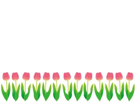 Tulip (frame)