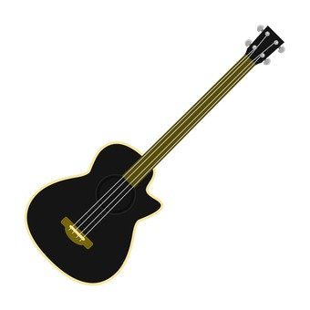 Acco bass guitar 2