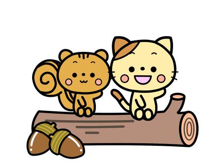 丸太に座る、ネコとリス