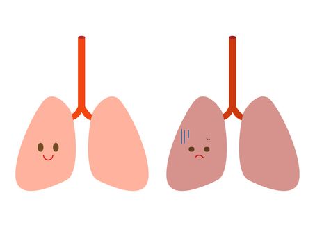 Healthy lungs and diseased lungs
