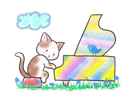 피아노 고양이 62