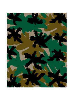 Camouflage pattern army