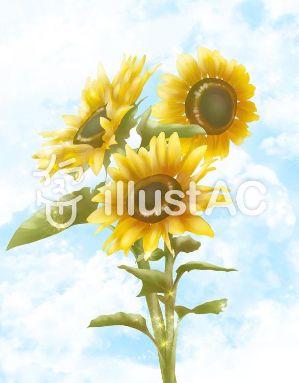 【フリーイラスト素材】お花・ひまわりと空