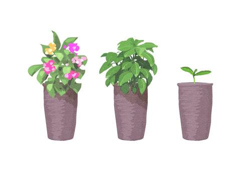 Flowerpot 009