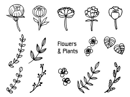 Pencil writing flowers and plants