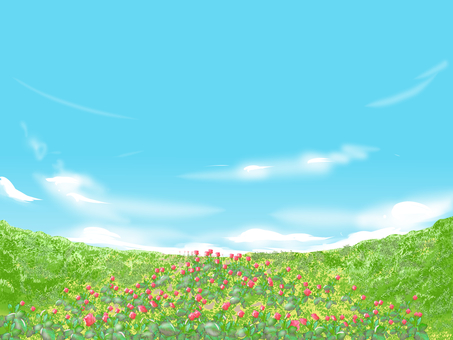 chacha 푸른 하늘 장미 꽃