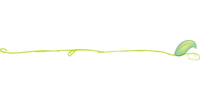 Ruled line