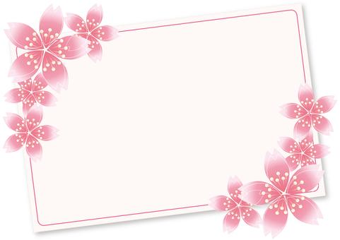 Sakura Sakura & Board 7