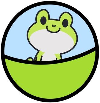 Capsule frog