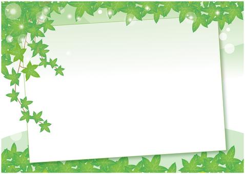담쟁이 잎 보드