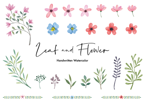 Watercolor leaves and flowers illustration set