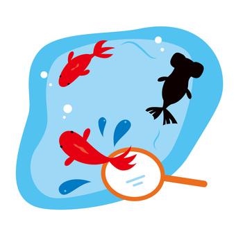 Goldfish scoop illustration