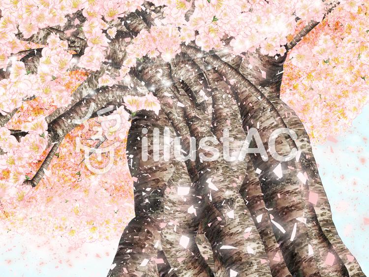 キラキラ桜吹雪のイラスト