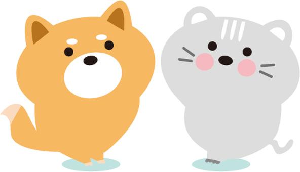 Shiba Inu and a cat