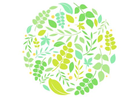 Fresh green material 83