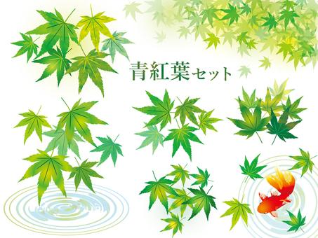 夏青紅葉水彩画手書き和風もみじイラスト葉