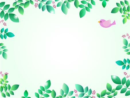 Green and flying birds 1-3