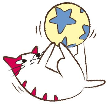 A cat rolling the ball with hind legs