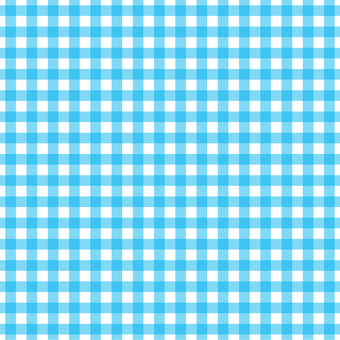 Gingham check (blue)