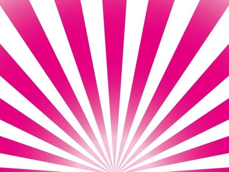 Radiant 20 pink