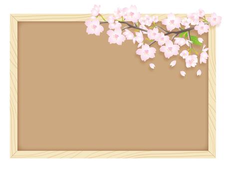 Cherry blossoms and cork board