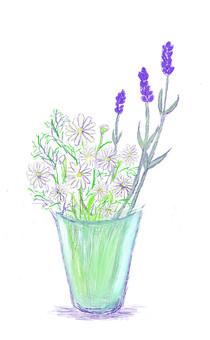 Herb Chamomile · Lavender