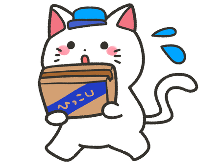 White cat moving