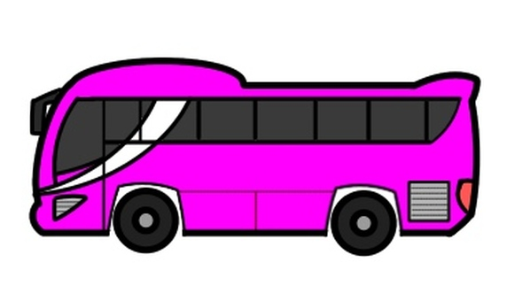 Tourist bus Pink