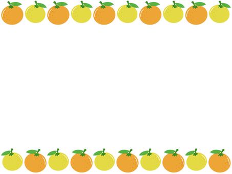 A frame full of tangerines