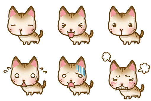Cat face set