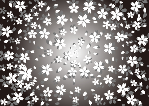 シンプルな桜の壁紙用画像(モノトーン