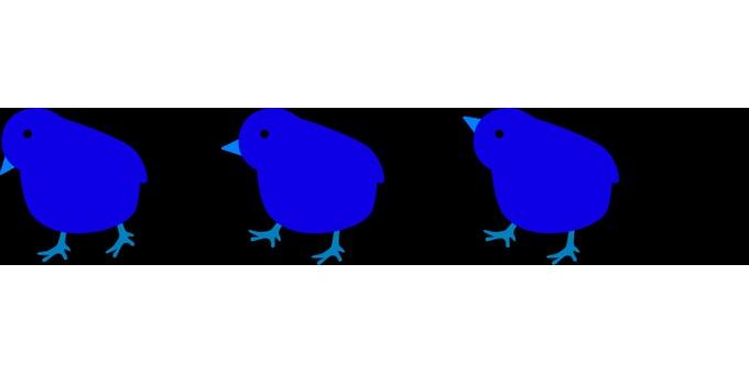 A row of chicks